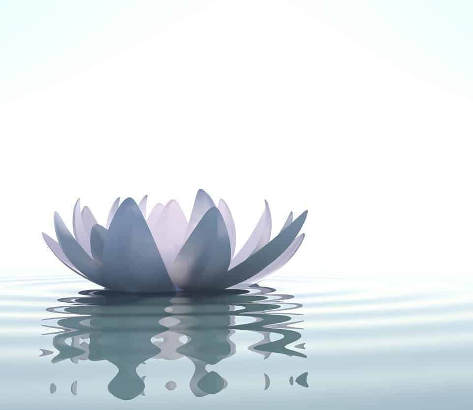 meditation by jainmantras, focus on thoughts